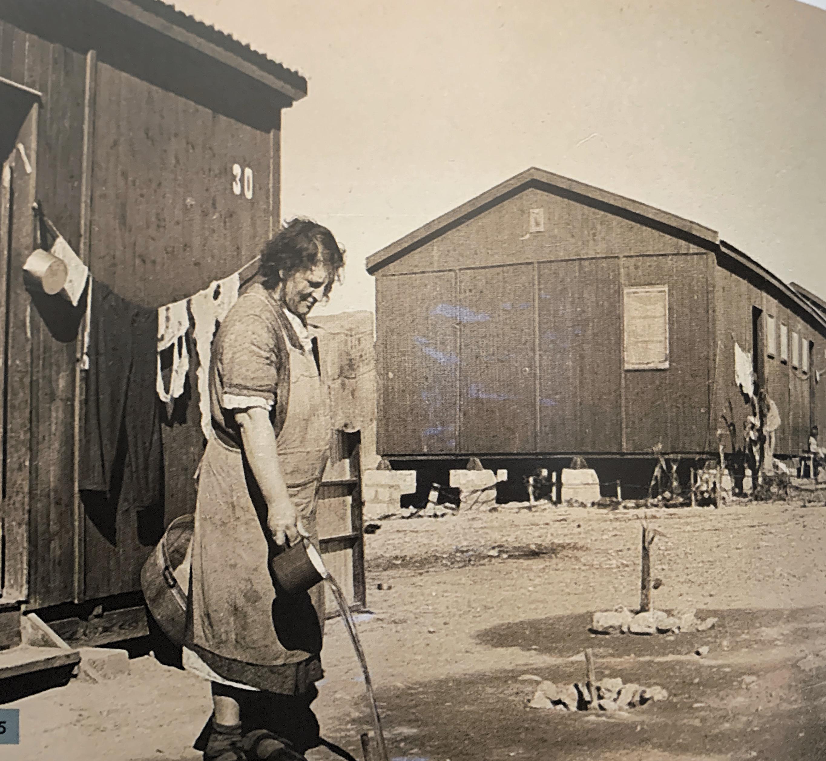 מעברת עולים עין חוסוב בנגב 1952
